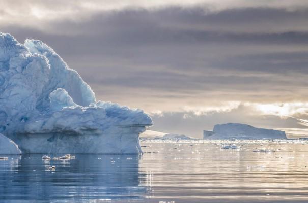 Kom nära isbergen i Neko Harbour, Antarktis, och upplev den imponerande frusna kontinenten.