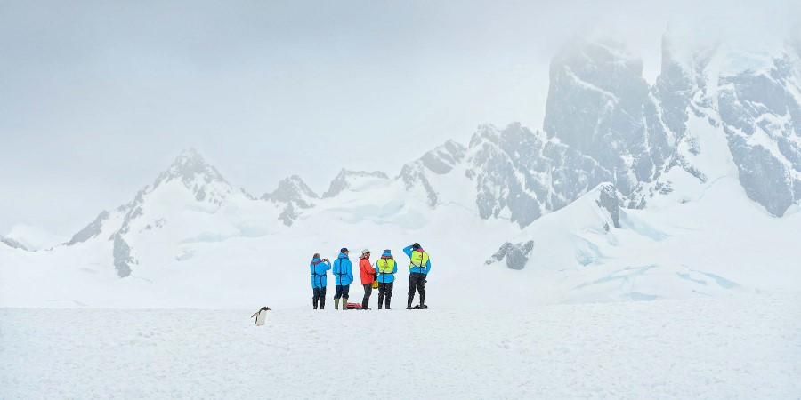 Antarctica_13122013_358-High©Marsel-van-Oosten.jpg